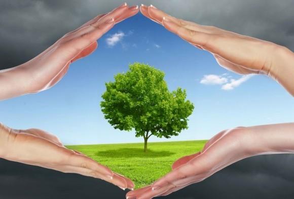 Как да поддържаме свеж въздух у дома?